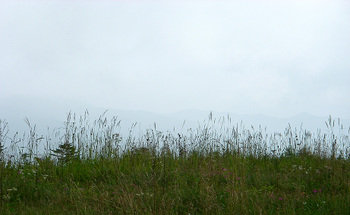 Ryousen
