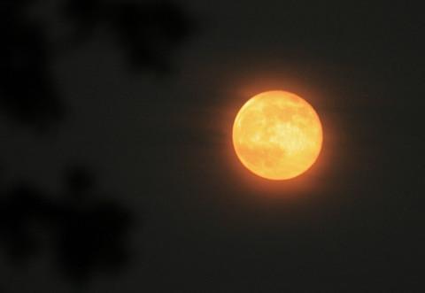 Super_moon_05