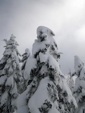 3_snow_monster