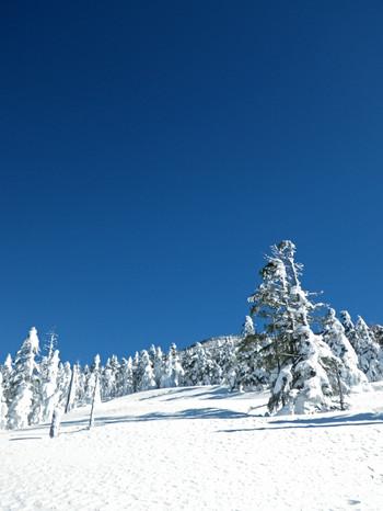 4_fresh_snow